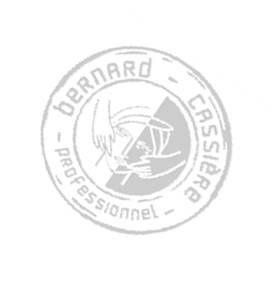 Bernard Cassierre1